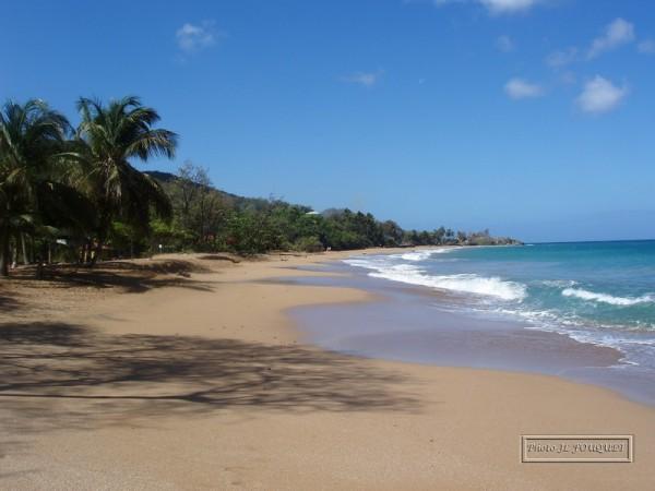 guadeloupe, plage, la perle, basse terre