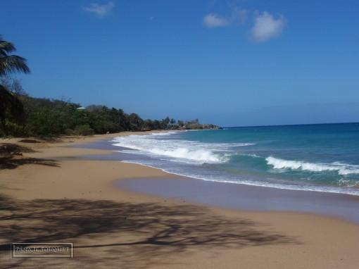 Guadeloupe, FWI, beach, La Perle, overall view