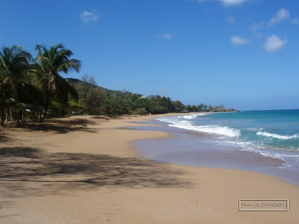 guadeloupe, beach, la perle, basse terre, FWI, french west indies