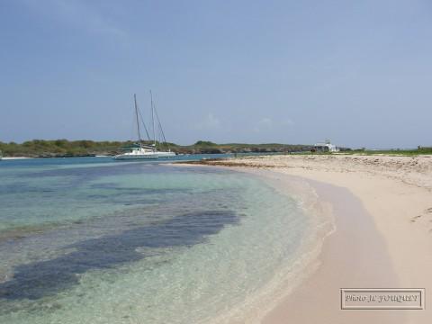 Guadeloupe, petite terre, plage, requins, passe, mouillage, terre de haut