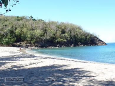 petite anse beach, pointe noire
