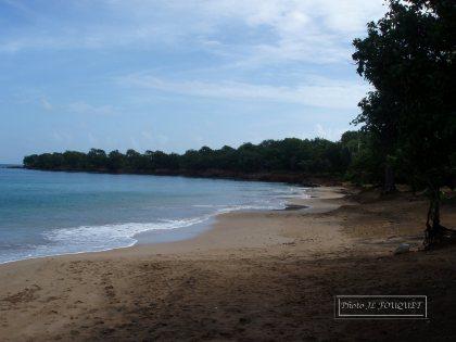guadeloupe, beach, anse, anse des iles