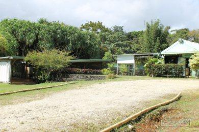goyave, guadeloupe, blonzac, water garden