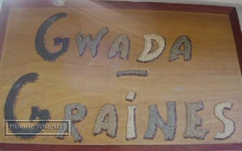 Gwada graines, artisan, guadeloupe, graines, tableaux, malendure