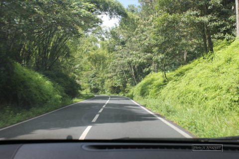 traversee, guadeloupe, route, basse terre, ecrevisses