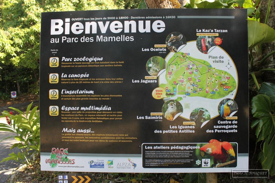 zoo, mamelles, guadeloupe, parc mamelles