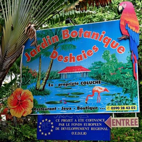 guadeloupe, deshaies, jardin botanique, coluche