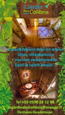 guadeloupe, deshaies, gite, jardin des colibris gite