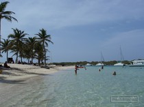 guadeloupe, petite terre, plage, nord, requins