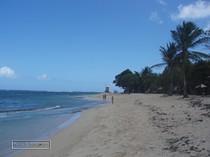 le moule, guadeloupe, plage