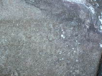 engraved rocks, guadeloupe, trois rivieres, park