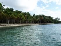 saint francois, guadeloupe, grande terre, plage, sable